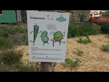 Nieuwe info borden voor Voedseltuin Overvecht